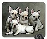 Did You Take The Picture Yet Mouse Pad, Mousepad (Dogs Mouse Pad)