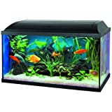 PACIFIC Set Aquarium avec Filtre à Décantation 60 x 30 x 30 cm