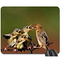 Pavone Bianco Mouse Pad, Mousepad (Uccelli Mouse Pad) #004