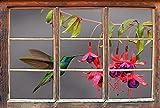 Verde colibrì dettaglio nettare bere da B & WFinestre in 3D guardano, muro o adesivo porta Misure: 92x62cm, autoadesivi della parete, autoadesivo della parete, decorazione della parete