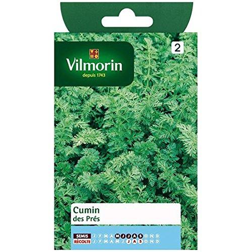 Vilmorin - Sachet graines Cumin des prés