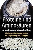 Proteine und Aminosäuren für optimalen Muskelaufbau: Die besten Eiweiße und Aminos für Bodybuilding und Kraftsport