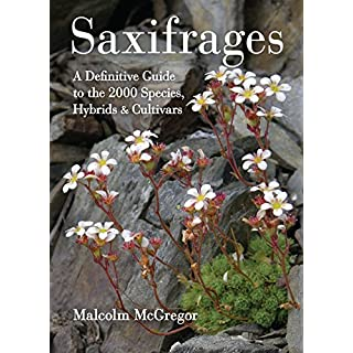Saxifrages: The Definitive Guide to 2000 Species, Hybrids and Cultivars