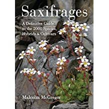 Saxifrages: A Definitive Guide to the 2000 Species, Hybrids & Cultivars