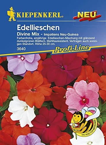Kiepenkerl 3640 Edellieschen Divine Mix (Edellieschensamen)