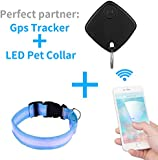 Topperone LED Pet Blue Collar and Black Pet Finder and Cell Phone locator- Dog and Cat GPS Tracker Phone Finder Wallet Finder Pet Finder Pet Activity Tracker Alarm Bluetooth / Mini Bluetooth Tracker Locator / Key Finder / Locator, theft protection for pets and children adjustable size