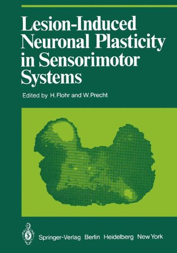 Lesion-Induced Neuronal Plasticity in Sensorimotor Systems (Proceedings in Life Sciences)