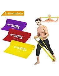Bandas Elasticas Fitness Goma Resistencia Bandas de Ejercicios para Yoga, Pilates, Crossfit, Estiramientos, Fisioterapia, Entrenamiento de fuerza, 3 Cintas Elastica de Resistencia con Nivel de marca