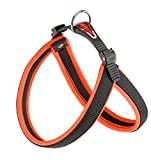 Ferplast Agila Neon 3 Hundegeschirr, orange 42 cm x 50 cm x 15 mm