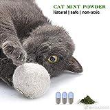 Catnip in Ball Toy Catnip cat snacks entretenido, Catnip puede ser reemplazado repetidamente, regalo de Cat