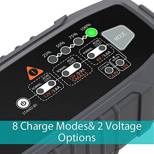 Zoom IMG-1 autoxel caricabatterie e mantenitore per