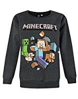 Official Minecraft Run Away Boy's Sweatshirt (9-10 Years)