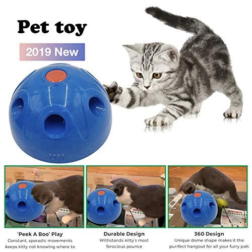 knowledgi N Play Interaktive Bewegung Katzenspielzeug - Automatisches Katzentrainingsspielzeug Und Interaktives Federspielzeug, Pet Entertainment Intelligence Fun (blu)