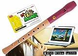 Flute Master (software) con flauto dolce in legno e plastica (manico barocco)