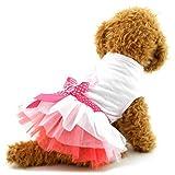 ranphy Welpen Kleiner Hund Katze Tutu Prinzessin Kleid abgestuftes Sommer Pet Rock Schleife Chihuahua Kleidung für Mädchen Hund Bekleidung Romantische, Lovely