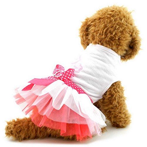 (ranphy Welpen Kleiner Hund Katze Tutu Prinzessin Kleid abgestuftes Sommer Pet Rock Schleife Chihuahua Kleidung für Mädchen Hund Bekleidung Romantische, Lovely)
