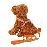 strimusimak Verstellbarer reflektierender Walking-Auffanggurt Brustgurt mit Hundeleine Haustier Hund Orange L