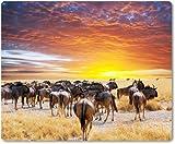 Mauspad / Mouse Pad aus Textil mit Rückseite aus Kautschuk rutschfest für alle Maustypen Motiv: Afrika Safari Gnu Herde | 02