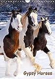 Gypsy's (Wandkalender 2019 DIN A4 hoch): Pferde mit Puschelfüssen (Monatskalender, 14 Seiten ) (CALVENDO Tiere)