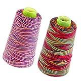 SM SunniMix 2X Rotolo di Filo di Multicolore Filati per Cucire per Riparazione di Abbigliamento Abito Pacchetto DIY 40s / 2