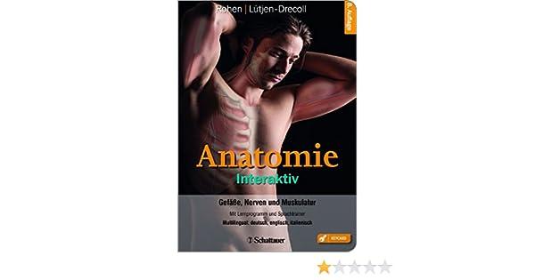 Anatomie Interaktiv: Gefäße, Nerven und Muskulatur - Mit ...