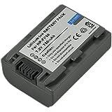 Batería NP FP50 para Sony FP70, FP30, FP90, FP60, FP71, NPFP50, NPFP30, DCR DVD92E, DVD105, DVD202E, HC23E, DVD203E, HC19E, DVD205, HC24E, DVD505E, HC42E, HC39E, SR90E, HC30E y HC32