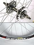 Momentum Solo 700c Wheel: Black Rear