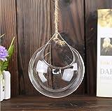 Wicemoon 3 Pcs Hängende Glasvase Transparente Dekoration Wasser Kultivierte Blume Kugelförmige Vase Home Hochzeit Dekoration(8/10/12cm)