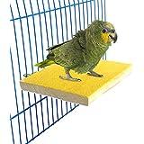 Bwogue Bunte Vogel Barsch Ständer Plattform, Naturholz Schleifstifte Vogelkäfig Sitzstange für Papagei Sittich Hamster Gerbil Käfige Spielzeug