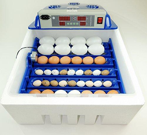 Campo24 S60 Motorbrüter autom. Wendung Brutapparat, Inkubator, für bis zu 60 Eier Inkubator - 2
