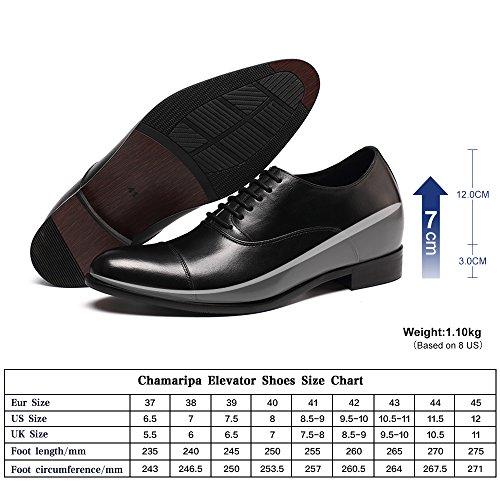 CHAMARIPA Chaussure Rehaussante en Cuir marron pour homme de style Oxford plus grandit de 7 cm Black