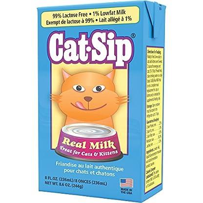 Cat-Sip Real Milk 1