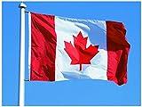 Naisdier Kanada Flagge Fahne [90x150cm] NEU Wetterfest FLAG