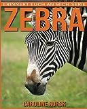 Zebra: Ein Kinderbuch mit erstaunlichen Fotos und interessanten Fakten über Zebra (Erinnert euch an mich Serie)