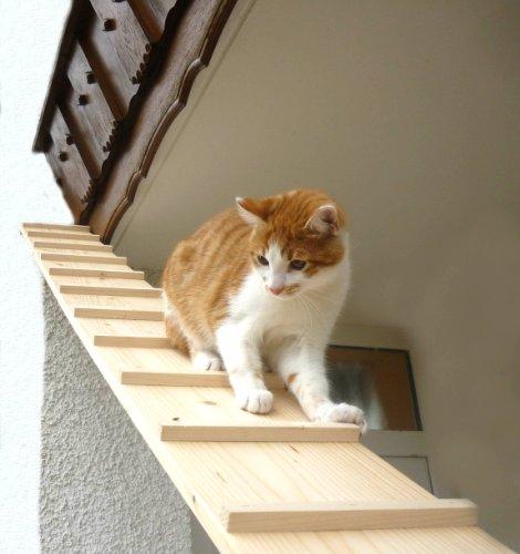 Katzentreppe, Balkonkatzentreppe 2 Meter