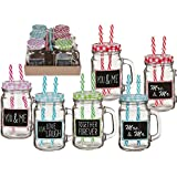 Pack of 6 Drinking glass Vintage Jar with handle + metal lid and 2 plastic drinking straw
