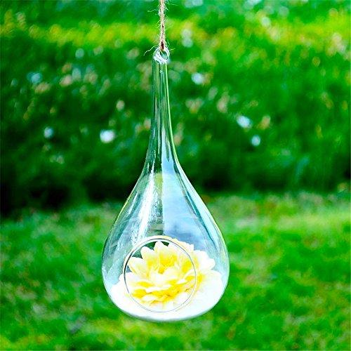 SHINA 2pcs kreative transparente Wasser Tropfen Art hängende Glasvase für Hauptdekoration oder Büro oder Hochzeits oder kreative Geschäfts Dekoration