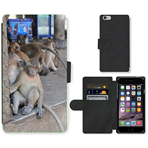 Just Mobile pour Hot Style Téléphone portable étui portefeuille en cuir PU avec fente pour carte//m00138458le singe Thaïlande Animal//Apple iPhone 6Plus 14cm