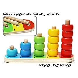 Toys of Wood Oxford Anelli di Stacking Bambino – Set di 15 Anelli conteggio per Imparare a contare, Imparare la Matematica e Imparare i Colori – Giocattolo educativo in Legno per 1 Anno di età