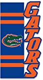 Best caseys Mantas - Florida Gators Applique Sculpted Garden Flag Review