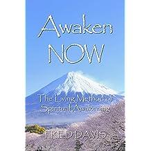 Awaken NOW: The Living Method of Spiritual Awakening (English Edition)