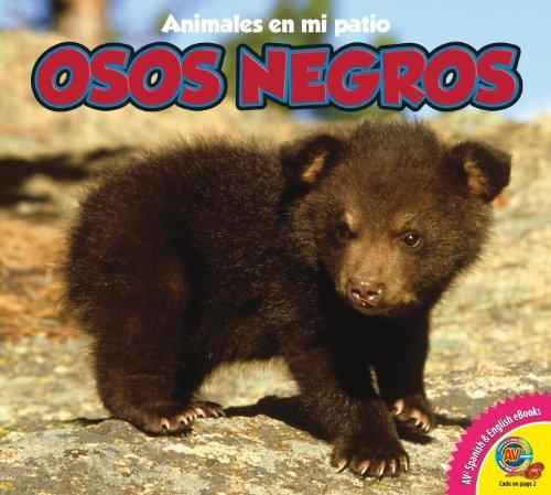 Osos Negros = Black Bears (Animales en mi patio: Complementos multimedia AV2) por Pamela McDowell