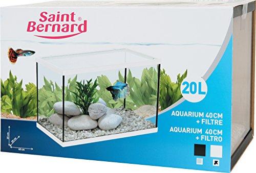 SAINT BERNARD Acuario con filtro para acuarofilia - 40 cm. - 20 litros