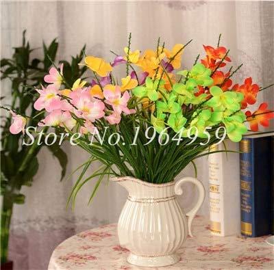 Shopmeeko Graines: Vase spécial coloré Bonsai Fleur Freesia Bonsai Décor rare orchidée Illuminez votre jardin personnel Bonsai 100 Pcs/Sac: 20
