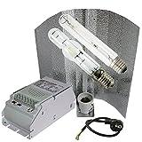 400W GIB / ETI Bausatz mit Greenbud Wuchs + Blüte Leuchtmittel