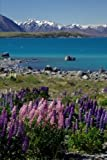 Lake Tekapo and Lupin Flowers New Zealand Landscape Journal: 150 Page Lined Notebook/Diary