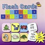 Tarjetas Vocabulario Infantil Ingles-Español. Animales Y Plantas