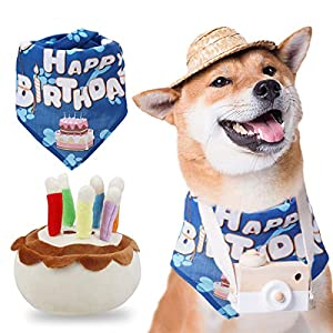 Chien d'anniversaire gâteau couineur Bandana et Jouets en Peluche pour Chien pour fête d'anniversaire Fournitures