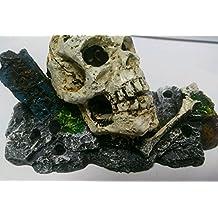 Craneo De Calavera hundida para acuario de resina 13X6X6 cm