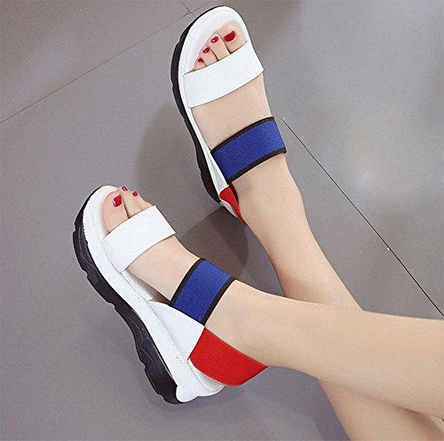 Sommer Sandalen weibliche Shisong Kuchen mit Sandalen und Pantoffeln in Sandalen mit atmungs beiläufiger Frau blue red